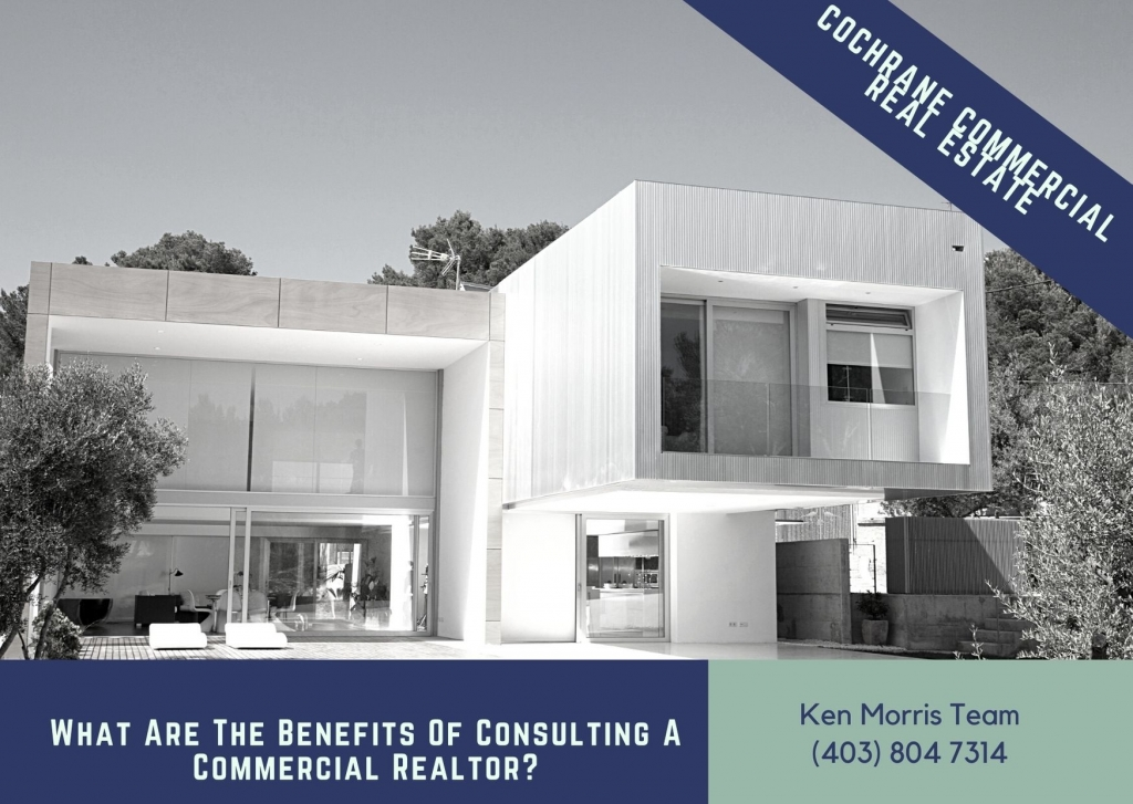 What Are The Benefits Of Consulting A Commercial Realtor before buying a business for sale alberta Image
